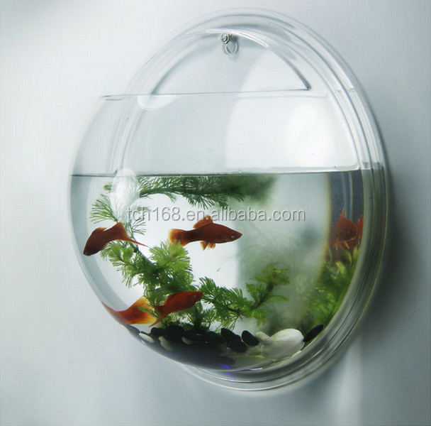 Clear acrylic wall mount round fish tank small plastic for Plastic fish bowl