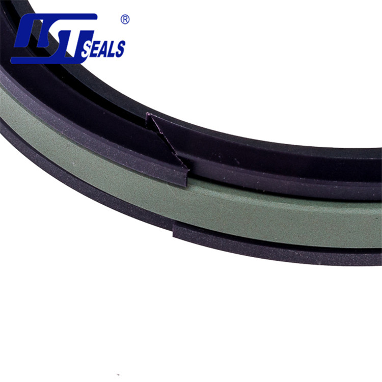 Guangzhou Factory MTP/Glyd/Wear Strip Hydraulic Seal