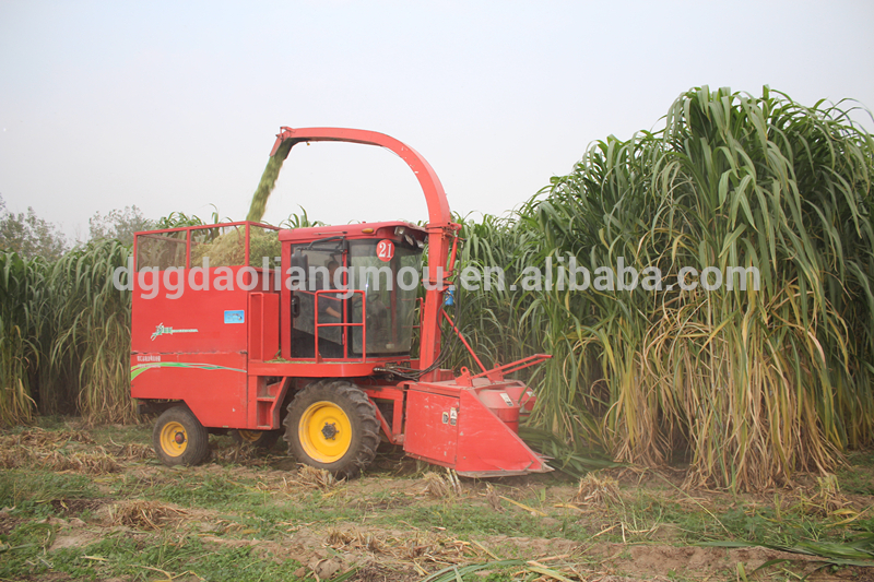 Self-propelled Tractor Mounted Napier Forage Silage Harvester For Grass  Cutter - Buy Harvester,Silage Harvester,Naiper Grass Cutter Product on