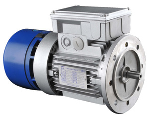 motor electric with AC brake