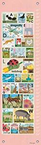Oopsy Daisy Growth Charts Modern Alphabet on Pink by Lisa DeJohn, 12 by 42-Inch by Oopsy Daisy
