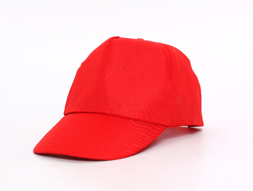 custom logo Promotional cap with cheap price