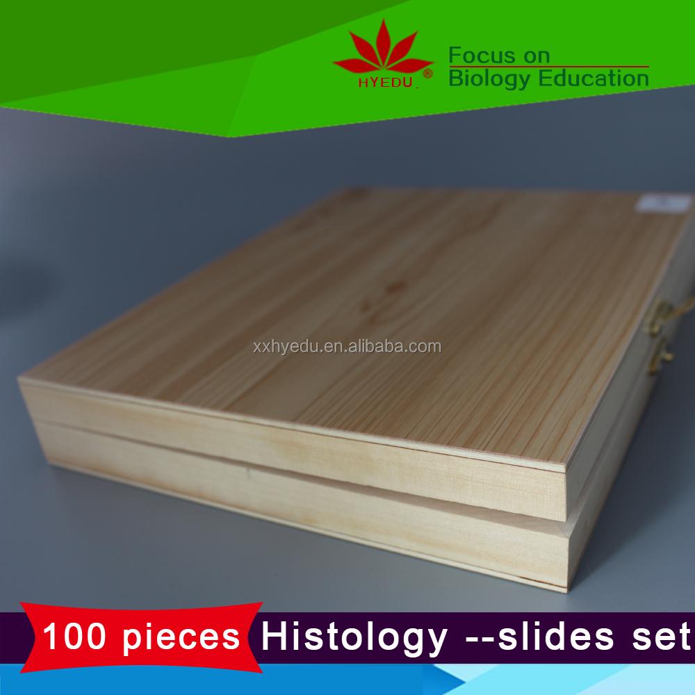 Popular 100 unids histología diapositivas conjunto de anatomía y ...