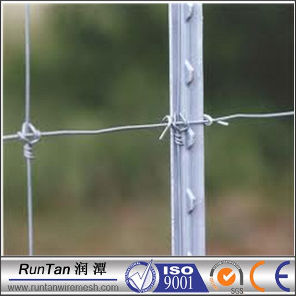 Galvanized Steel Fence Posts Steel Fence T Post Y Post