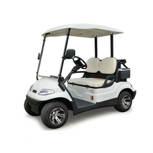 China manufacturer 2/4/6/8 seater electric eagle golf cart golf trolley club car with CE approved