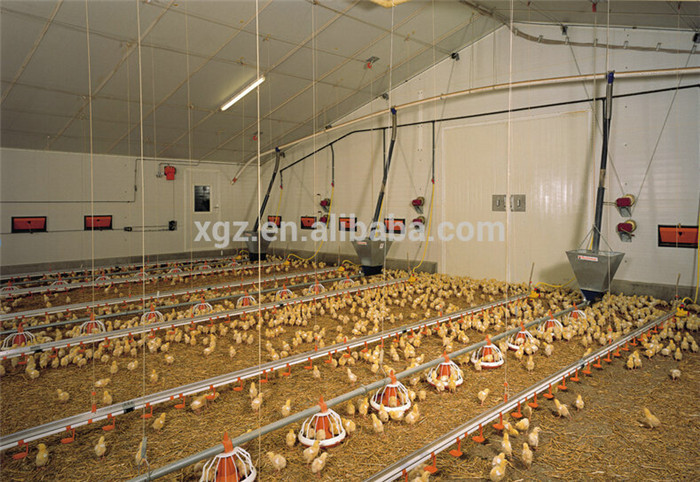 prefab automatic controlled chicken farm building