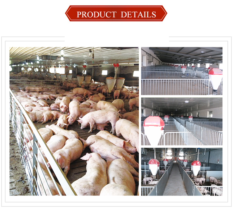 Certified Pig Farming Equipment Nursery Pen for Piglet