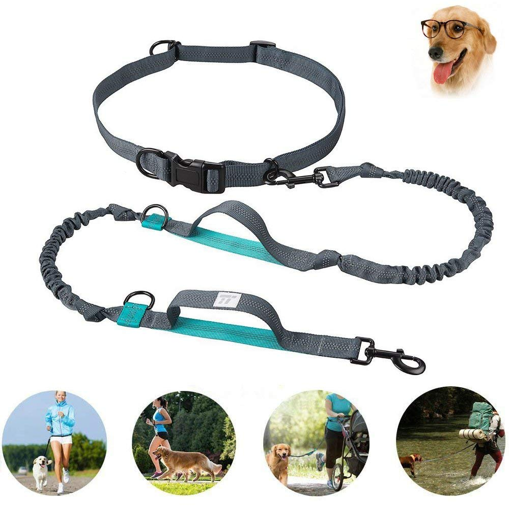 Retractable Hands Free Dog Leash Dual Bungees For Large Dogs,Adjustable Waist Belt,Professional Harness with Reflective Stitches for Training, Walking, Jogging and Running Your Pet
