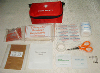 Travel pocket pet first aid kit