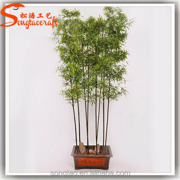 indoor china wholesale artificial bonsai artificial lucky bamboo tree plants bonsai plant tree. Black Bedroom Furniture Sets. Home Design Ideas