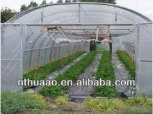 Green environmental protection film,can be usd in green house