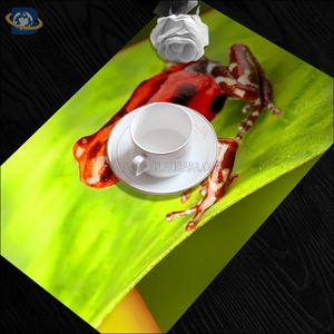 Extra Large Placemats, Extra Large Placemats Suppliers And Manufacturers At  Alibaba.com