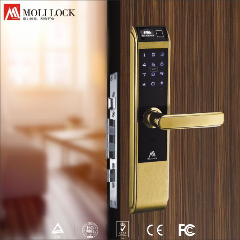 Famous brand electronic lock, Durable smart door lock, High quality from China factory