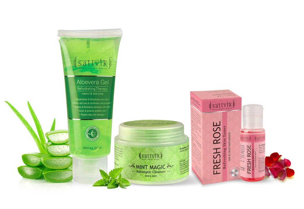 Sattvik Organics Skin'Tastic' Kit • Keeps Skin Refreshed & Smooth • Removes Excess Oil • Clears Pore Appearance• Replenishes & Rehydrates Skin Cells • Cures & Protects Problem Skin (6.7 oz)