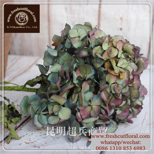 Rainbow silk flowers rainbow silk flowers suppliers and rainbow silk flowers rainbow silk flowers suppliers and manufacturers at alibaba mightylinksfo