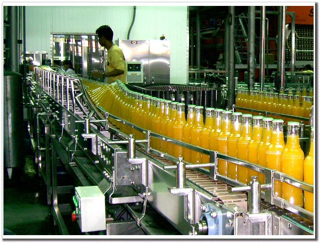 Straight chains conveyors / side flex top chain conveyor system