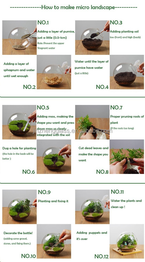 transparent glass bubble round shape Hanging Glass Terrarium for Home Office