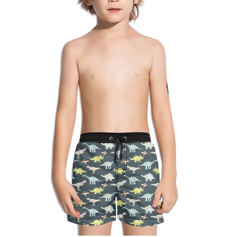 3fae4e241a FullBo Watercolor Dinosaurs Little Boy's Short Swim Trunks Quick Dry Beach  Shorts