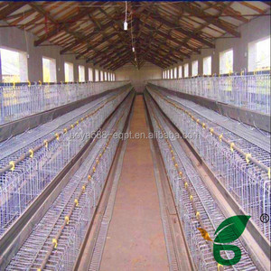 Stainless steel material poultry breeding chicken cage