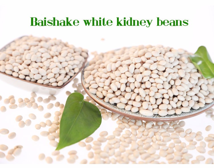 Good agricultural product white kidney beans Baishake type
