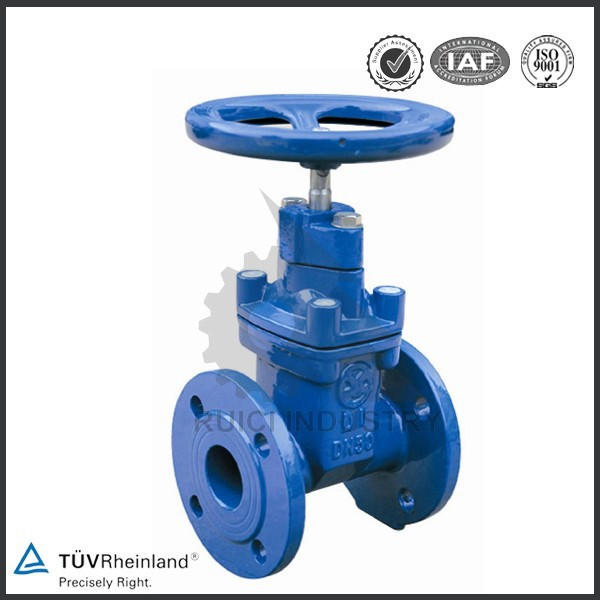 30 years' direct factory cast iron butterfly gate valve