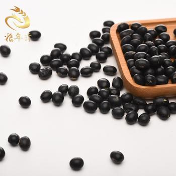 Origin natural dried bulk small black bean price turtle bean with green kernel