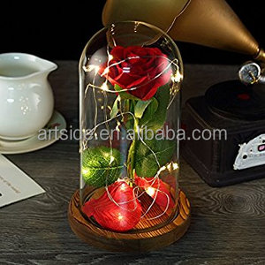 Preserved Flowers, Amused Immortal Flower In Glass Dome and LED Lights Decor on Wooden Base for Home Display Wedding Anniversary