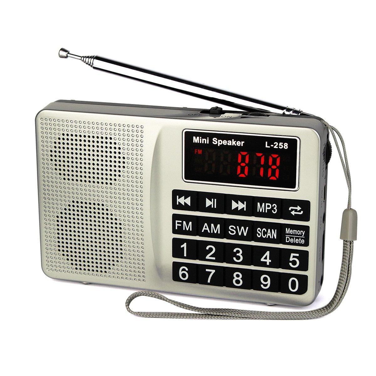 8905c7f339cf Get Quotations · TIVDIO L-258 Portable Digital Shortwave Transistor Radio  with AM FM Micro-SD Card