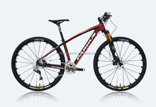 Crazy Mountain Carbon Fiber Bicycle 29""