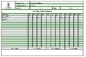Internal audit schedule sample templates buy sample for Disability access audit template
