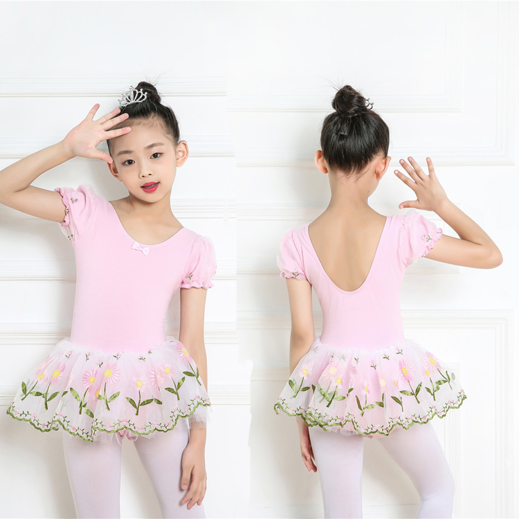 Kids Girls Cute New Design Pink Embroidery Tulle Skirt Attached Leotards Ballet TUTU Dress