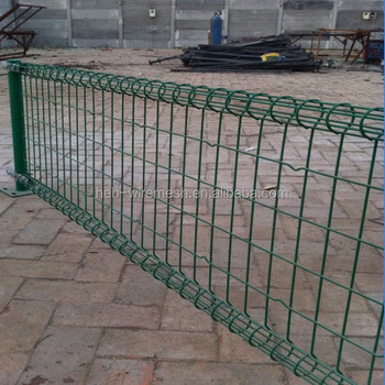Chinese Supplier Ornamental Double Loop Wire Garden Fence Product On
