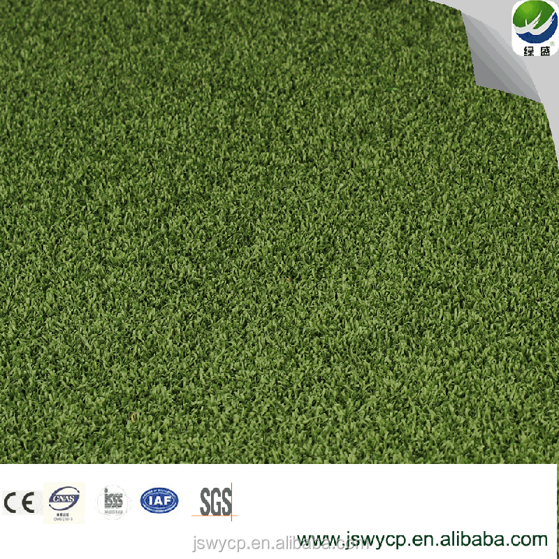 Golf Putting Green, Cricket, Gate Ball, Wypt-2, SGS, Ce Approved, Water Proof Artificial Grass Synthetic Turf Synthetic Lawn for