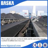 Large Conveying plastic conveyor belt