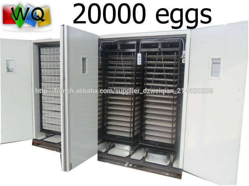 couveuse automatique pas cher 20000 oeufs incubateur d 39 oeufs id de produit 500003465104 french. Black Bedroom Furniture Sets. Home Design Ideas