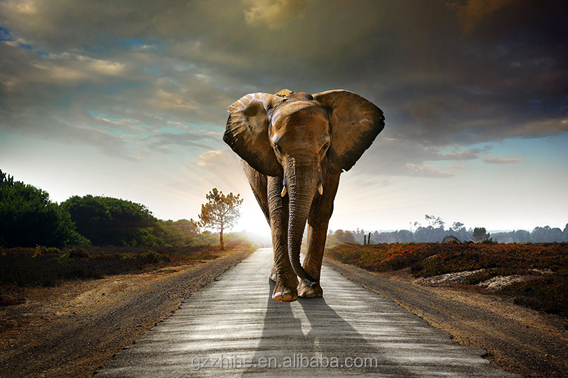 Hot item 3 D elephants painting for art wall decoration