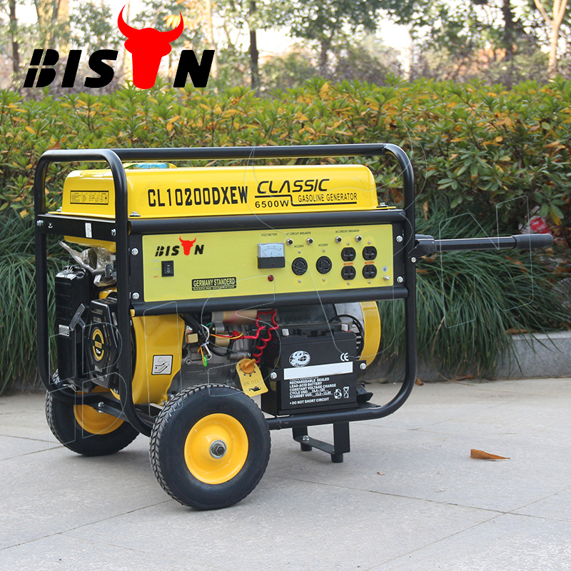 BISON(CHINA) BS6500S(H) 5kva 5kw 5000 Watt Copper Wire Electirc Start Portable LPG Gas Generator Price For Sale