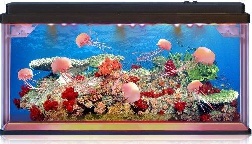 Jellyfish Aquarium With Led Lights,3d Backing - Stunning ...