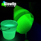 High quality low price environmental glow in the dark outdoor paint for brush