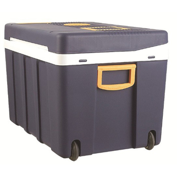 Camping Car Boat Caravan Cooler Portable Freezer Fridge Refrigerator 50L