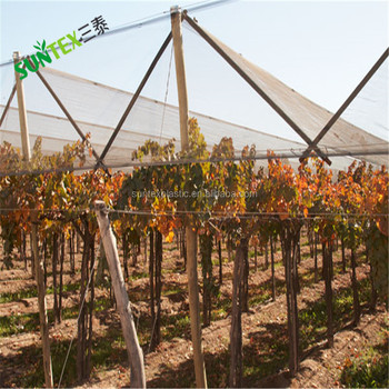 apple tree anti hail net/hail protection mesh/hailnetting factory