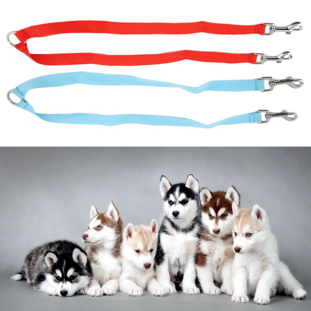 2.5*50 CM Double head Multiple Dual Coupler 2 Way Nylon Dog Pig Pet Walking Leash Lead Collar durable Nylon Dog Lead 2 Colors