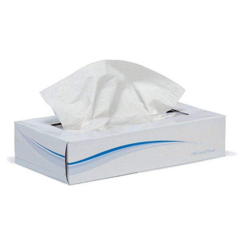 2-PLY RECYCLED FACIAL TISSUE 8 SHEET 100 SHTS BX 30 CASE