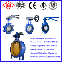 Wcb Blue Sanitary Manual Butterfly Valve Manufacture