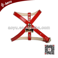 online shopping promotional pet safety harness