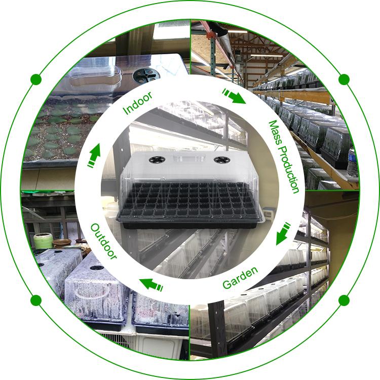 Nieuw product plastic zaad lade voortplanting chambers met deksel kit voor planten