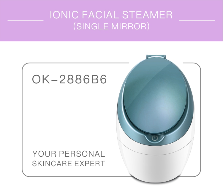 Skin Deep Cleansing Trending Product Ozone Hot Mist Facial Steamer Sauna Beauty Instrument Equipment