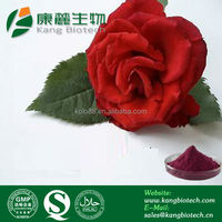 Chinese factory supply cosmetic ingredients rose extract