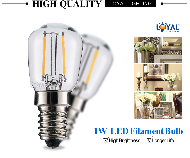 Ip20 0 5w 1w E14 Led Bulb Light High Lumen 1 Watt Led 12v Buy E14 Led Bulb Light 1 Watt Led Bulb 1w Led Bulb Product On Alibaba Com
