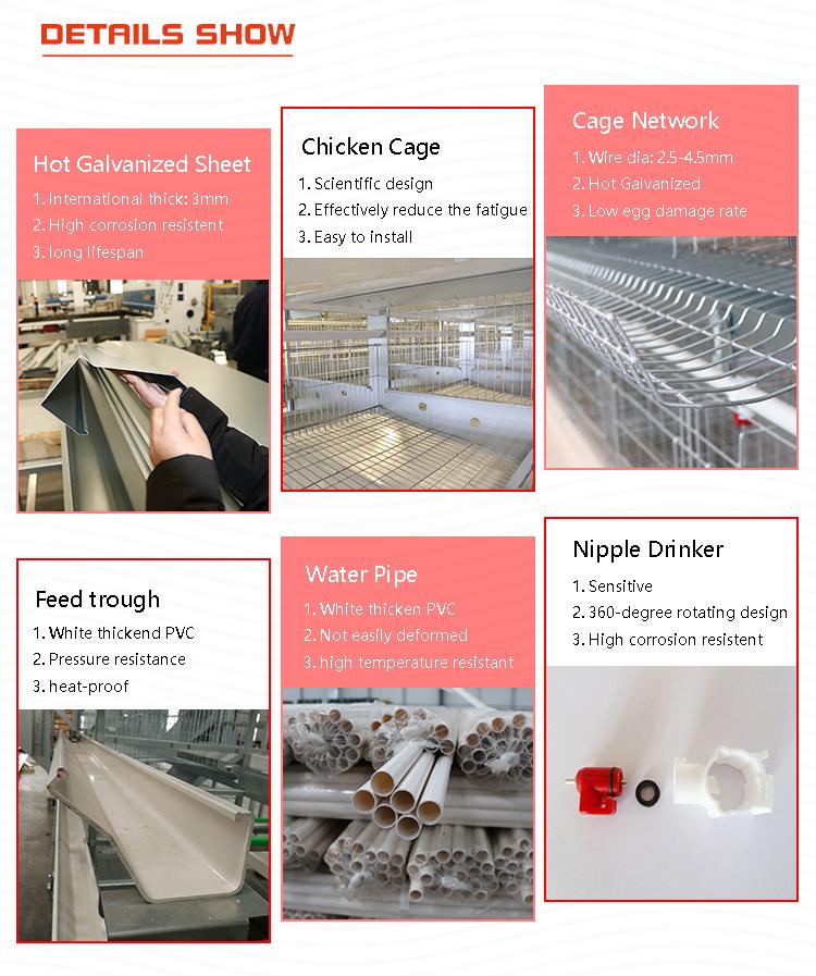 Tier lieferanten ei schicht geflügel ausrüstung aufzucht hühner h typ huhn käfig preis für verkauf